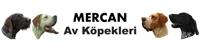 Mercan Av Köpekleri Logo